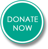 Donate Now Icon Button