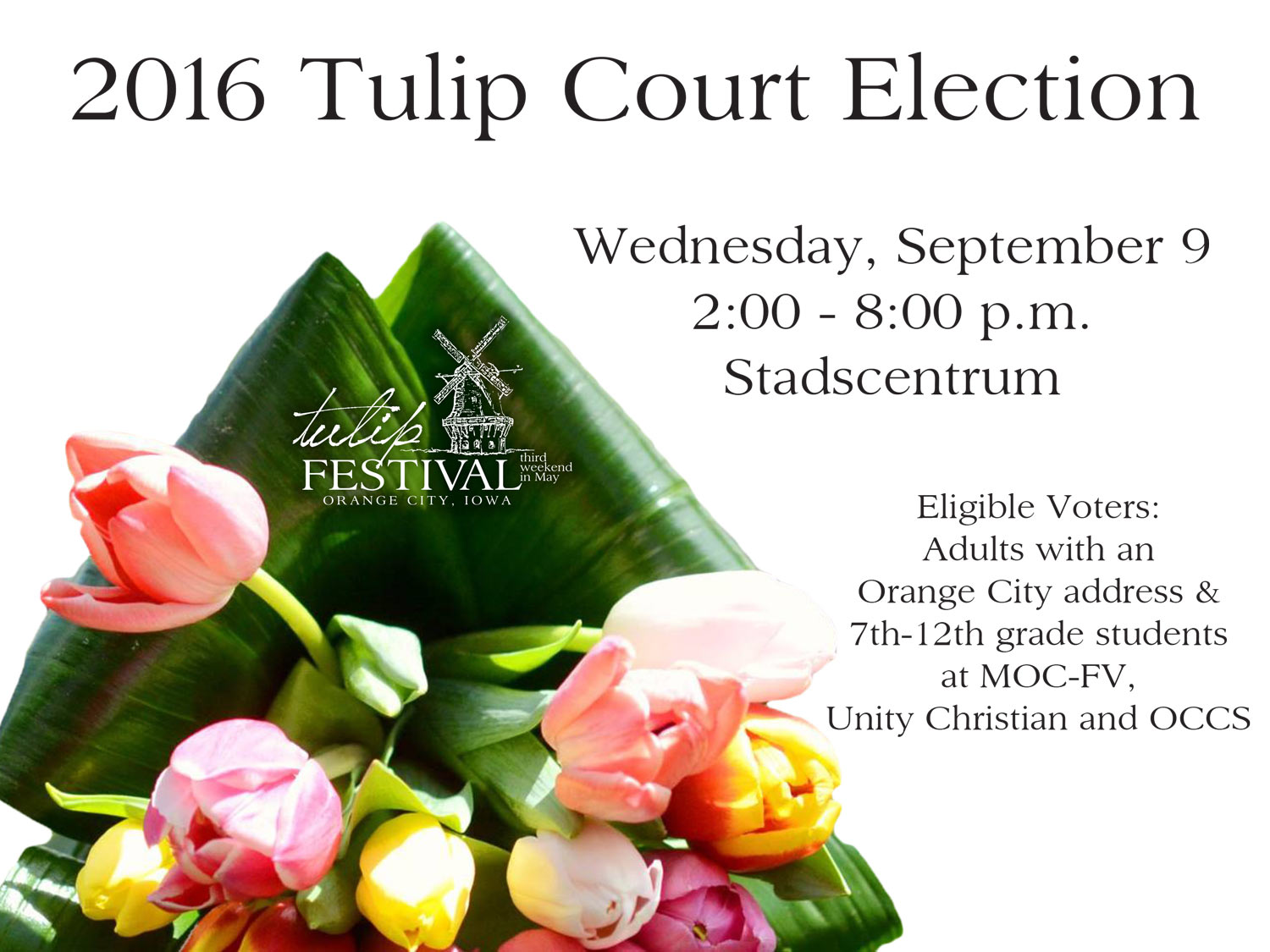 2016-Tulip-Court-Election-Ad