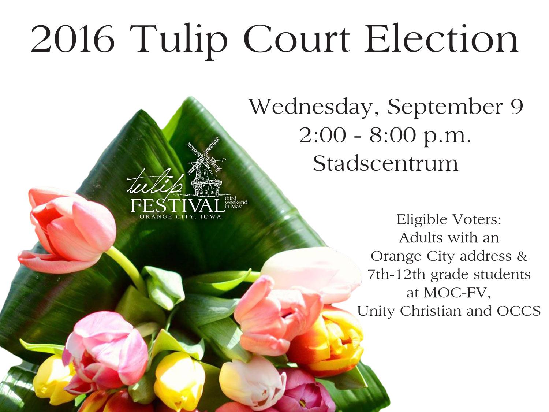 2016-Tulip-Court-Election-Ad