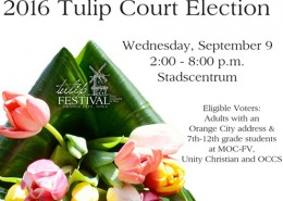 Tulip-Feature-election-2016