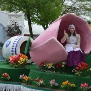 Tulip-Feature-parade2-495x400