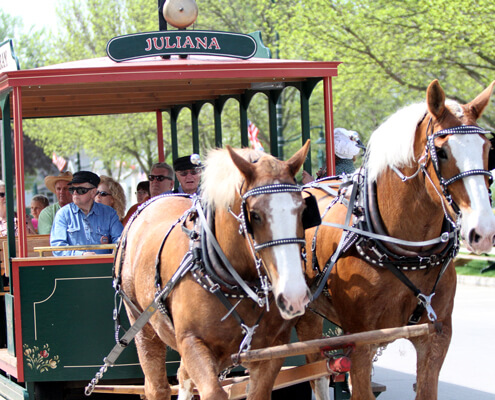 horse-drawn-trolley-tour-feature